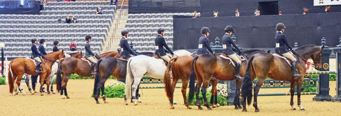 A Medal Finals Primer   The Plaid Horse Magazine