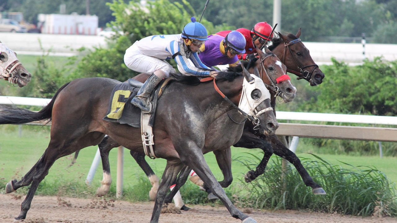 Indiana horse racing laws online betting betting world cup