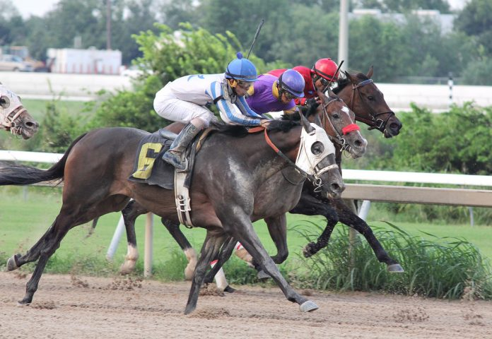 horse racing betting in us