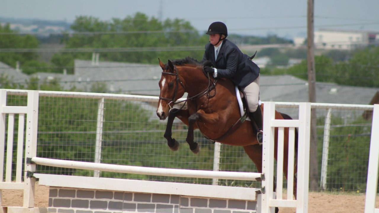 Here S To The Little Jumps The Plaid Horse Magazine