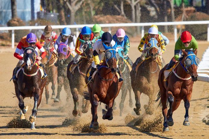 Canada woodbine horse racing betting 4 rws csgo betting