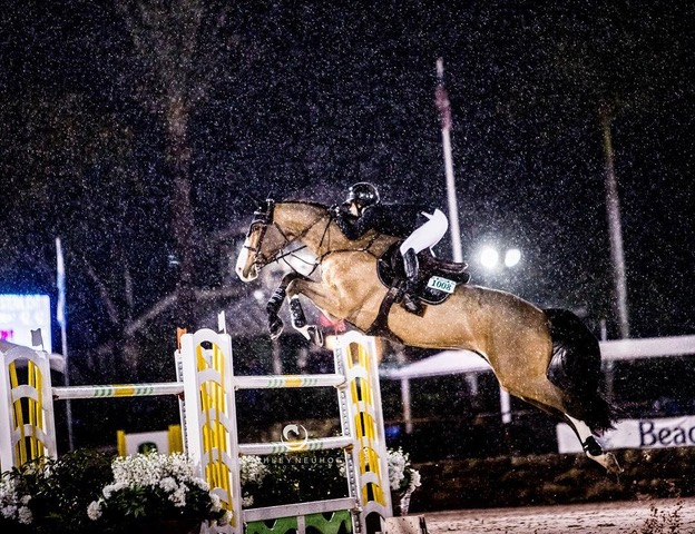 Plaidcast 18Piper and Traci are joined by Ashley Neuhof and Dr. Ron Gaeta to talk about photographing and caring for the top show jumpers