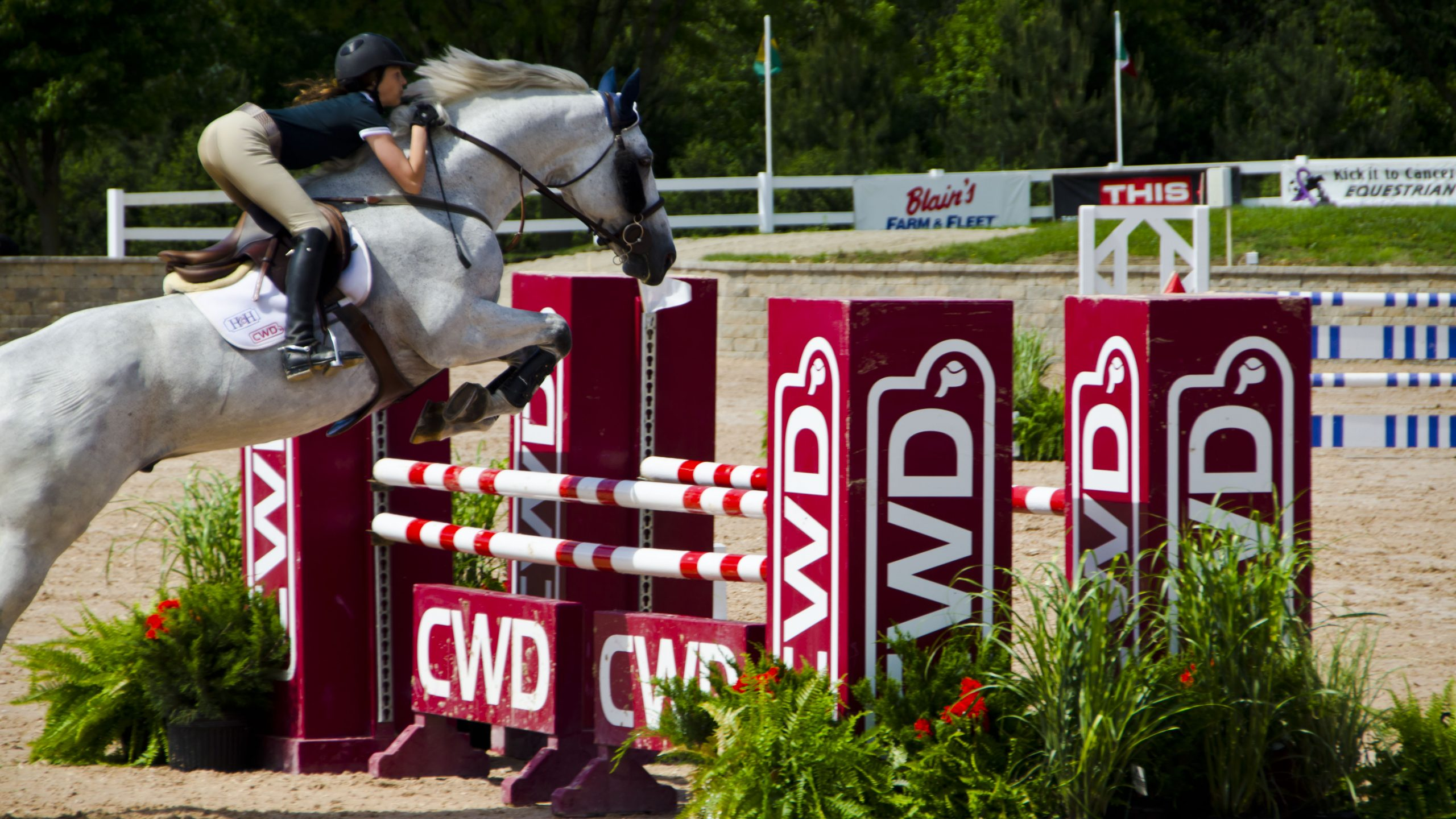5 Exercises To Help Improve Riding Skills And Posture The Plaid Horse Magazine